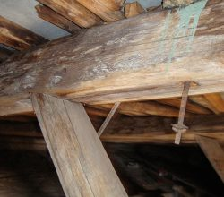 обследование деревянных конструкций зданий